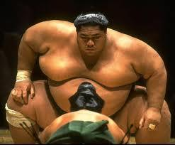 Do you want to be a sumo wrestler?